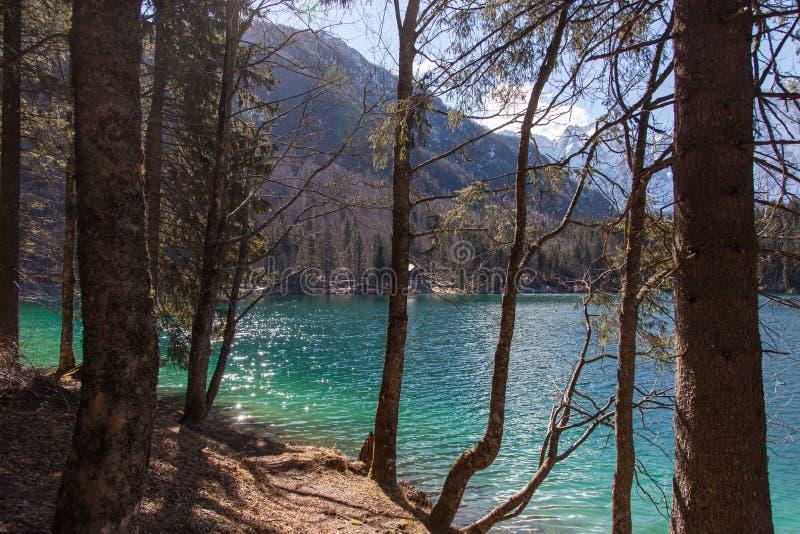 Lago alpino su Sunny Day immagine stock