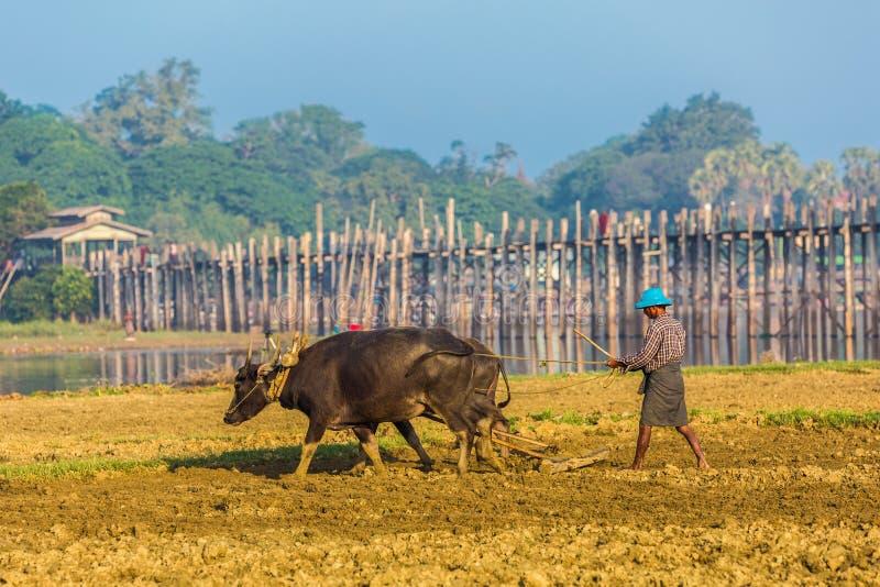 Lago Amarapura Myanmar Taungthaman del puente de U Bein foto de archivo