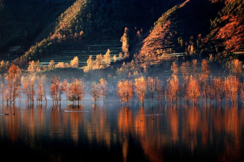 Lago ardente 1 imagens de stock