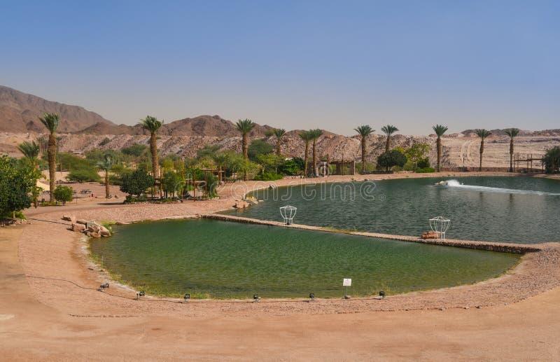 Lago artificiale nel parco di Timna, deserto di Negev, Israele fotografia stock libera da diritti