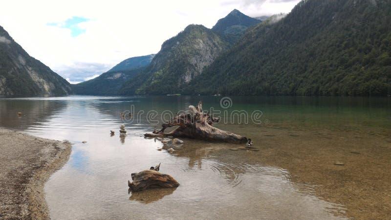 Lago in Austria fotografie stock libere da diritti