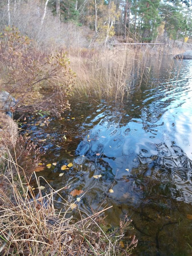 Lago Autum fotografia de stock