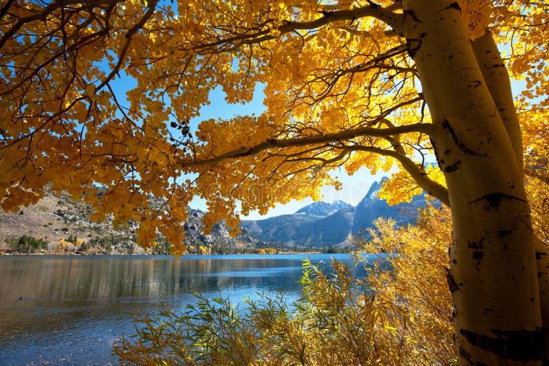 Lago autumn imagenes de archivo
