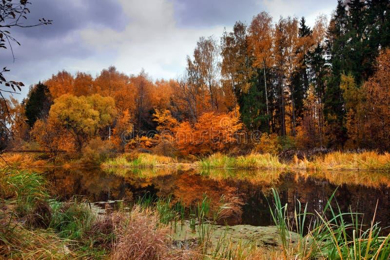 Lago autumn foto de archivo libre de regalías