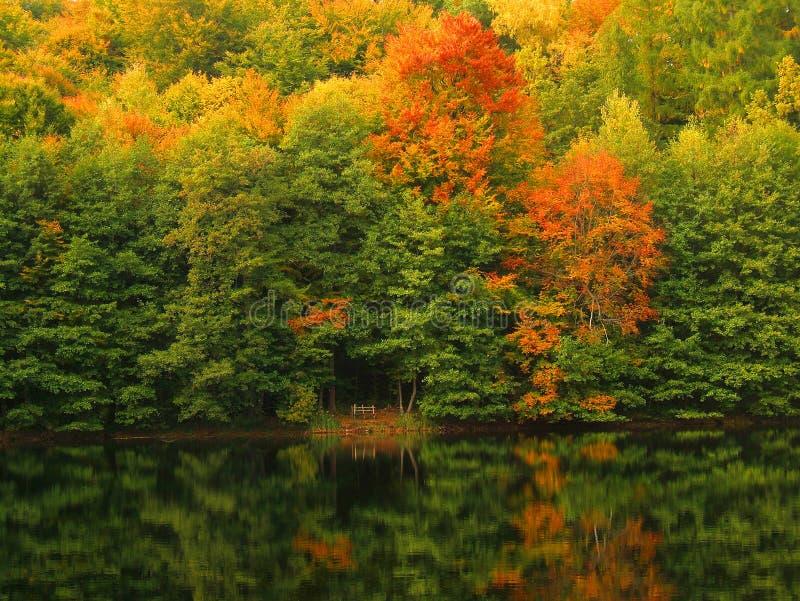 Download Lago autumn foto de stock. Imagem de nave, amarelos, floresta - 526850