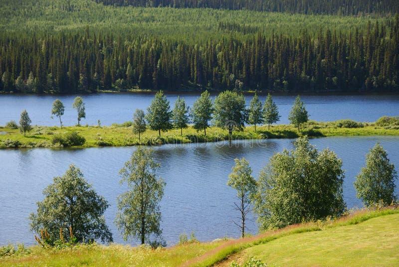 Lago azul com uma ilha no meio da floresta do taiga fotos de stock royalty free