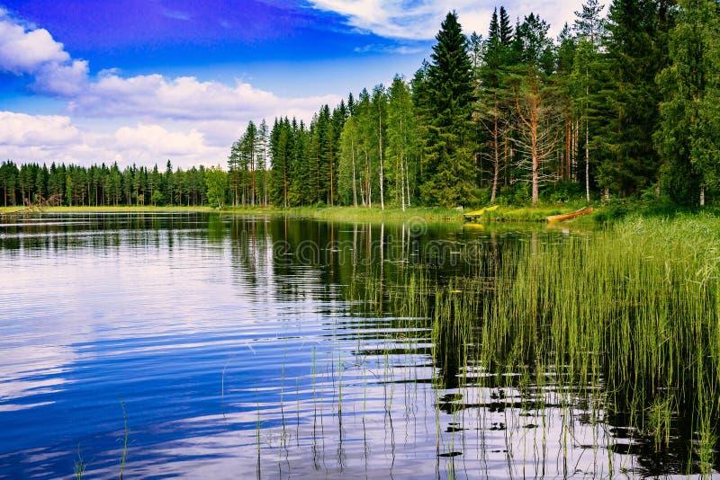 Lago azul e floresta verde em um dia de verão ensolarado em Finlandia fotografia de stock