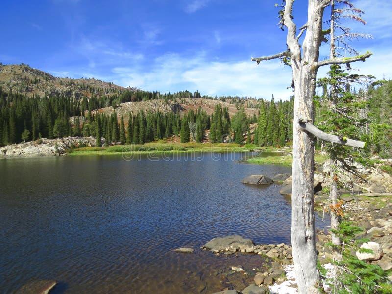 Lago azul nas montanhas de Idaho fotografia de stock