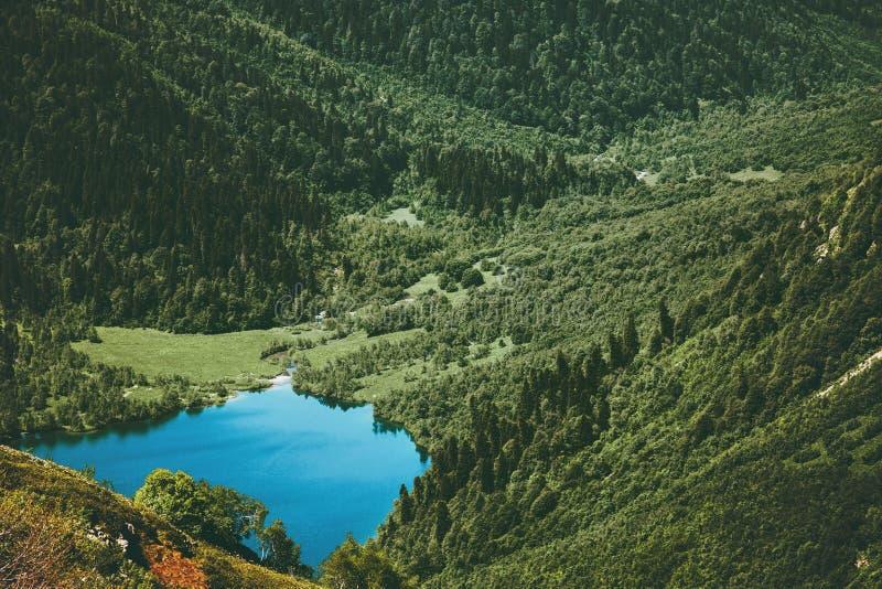 Lago azul y Forest Landscape conífero imagenes de archivo