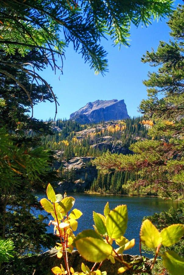 Lago bear a Rocky Mountain National Park fotografie stock libere da diritti