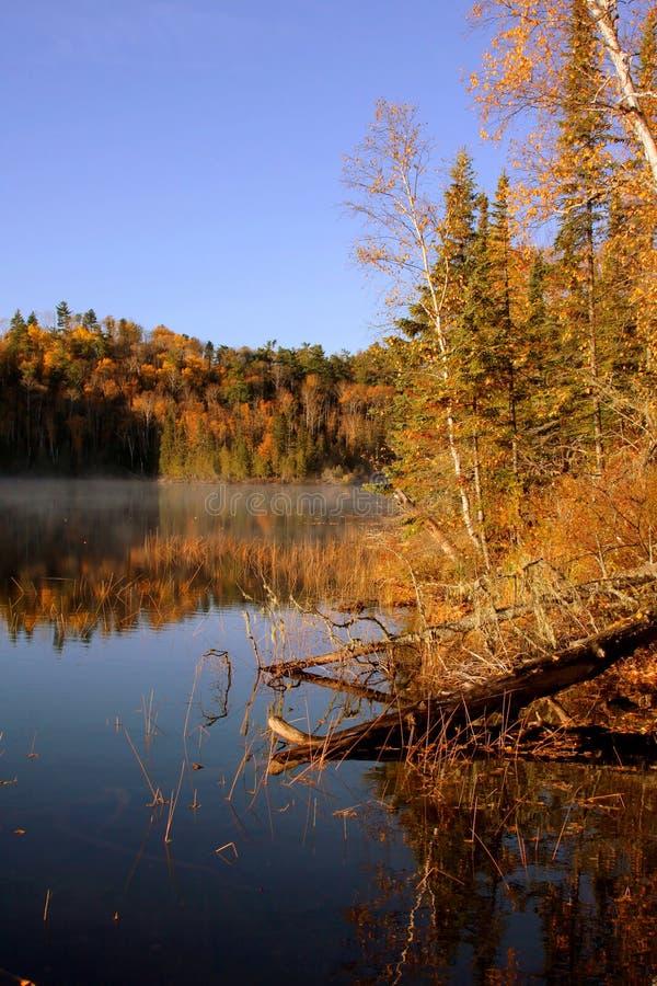 Lago bearskin nella caduta immagini stock libere da diritti