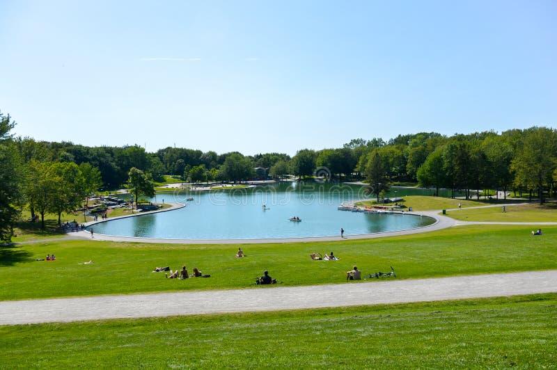 Lago beaver - parque real da montagem, Montreal, Quebeque fotos de stock royalty free
