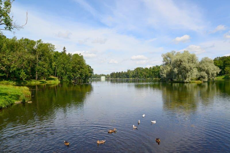 Lago Beloye nel parco di Gatcina, Russia fotografia stock