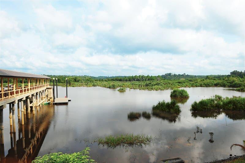 Lago Bera fotografia stock libera da diritti