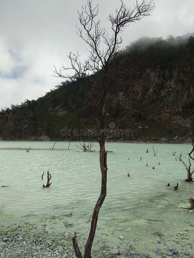 Lago bianco immagini stock