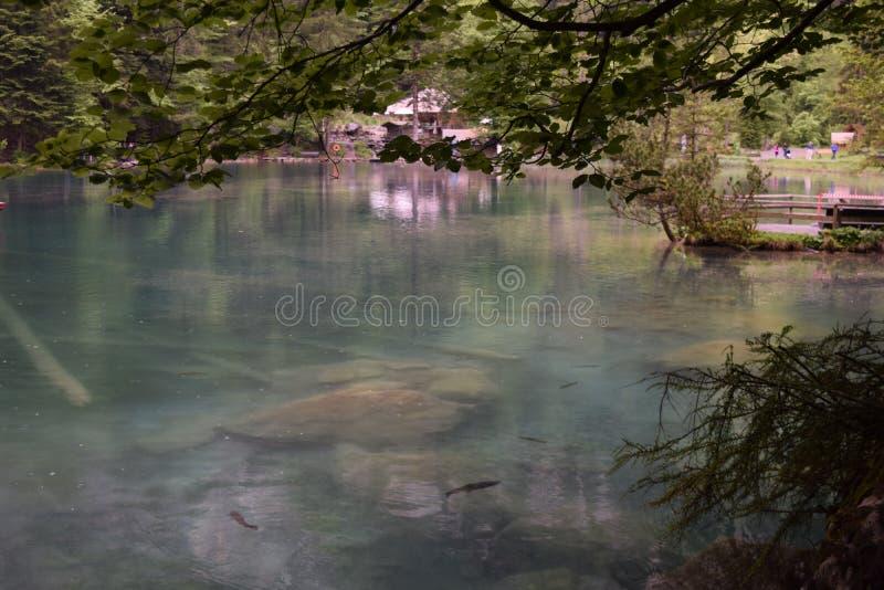 Lago Blausee, Suiza fotografía de archivo