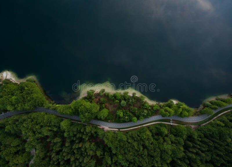 Lago Bohinj foto de stock royalty free