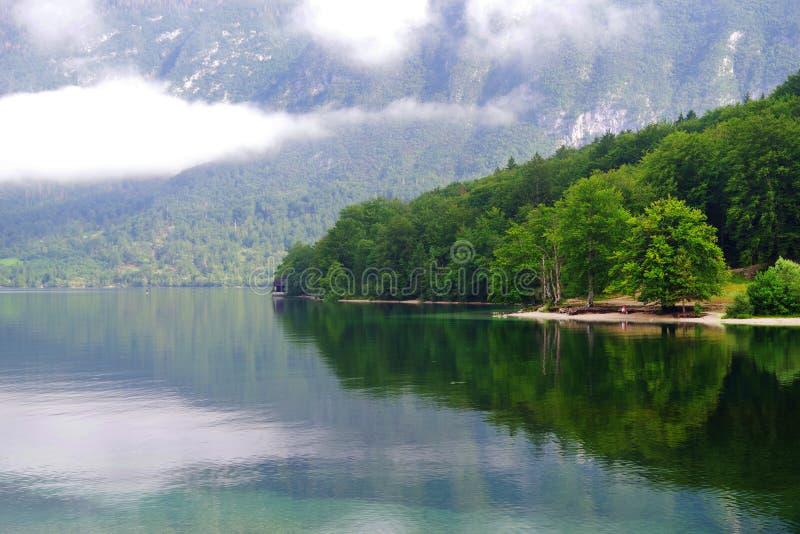 Lago Bohinj no parque nacional de Triglav imagens de stock