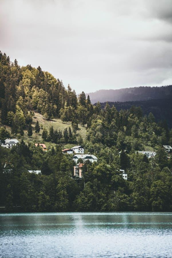Lago bonito com as casas construídas em um monte verde no fundo fotografia de stock