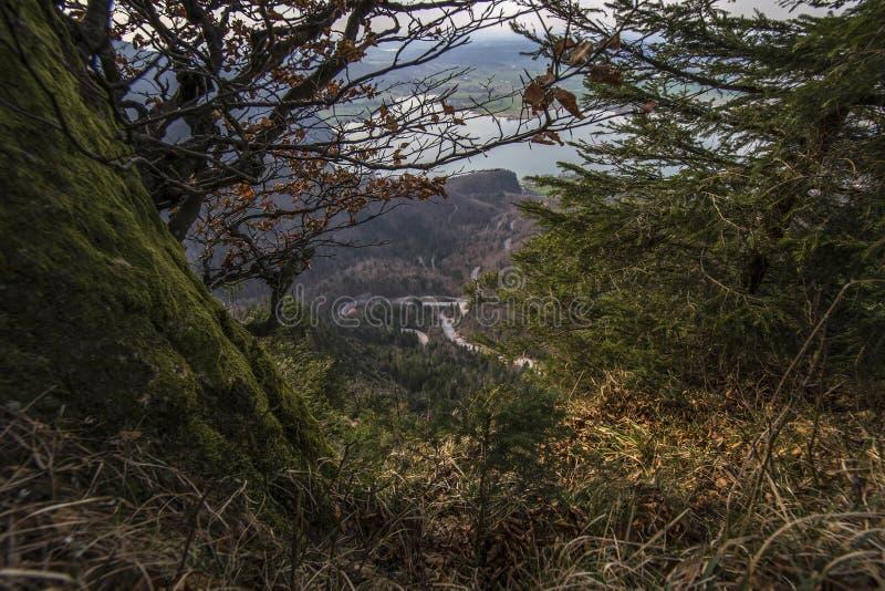Lago bonito da montanha em cumes bávaros Alemanha imagens de stock royalty free