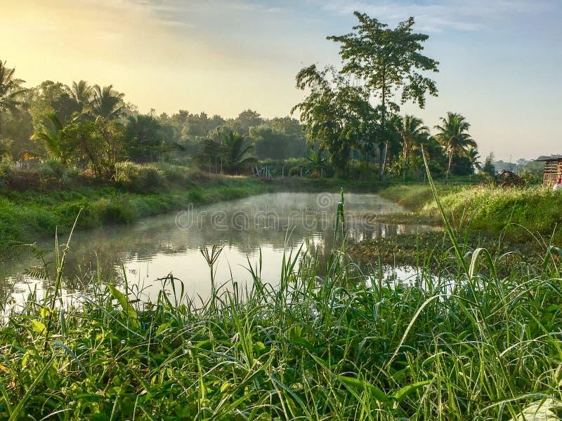 Lago bonito em Tailândia do norte na manhã com névoa fotos de stock royalty free