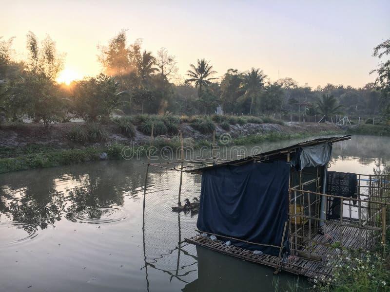 Lago bonito em Tailândia do norte na manhã com névoa imagem de stock