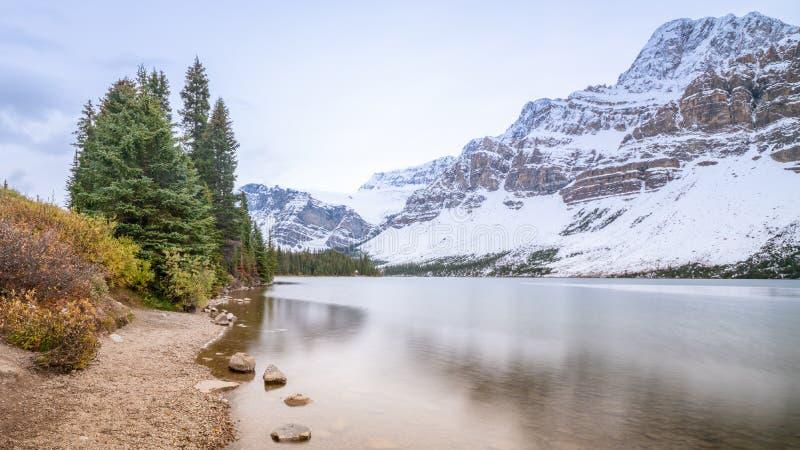 Lago bow con el bosque verde en la orilla, parque nacional de Banff, Alberta, Canadá del pino foto de archivo libre de regalías