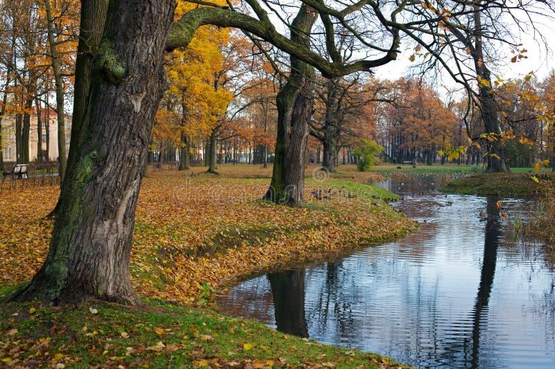 Lago cénico na cena do outono imagens de stock