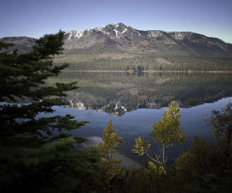 Lago caído leaf imagens de stock royalty free
