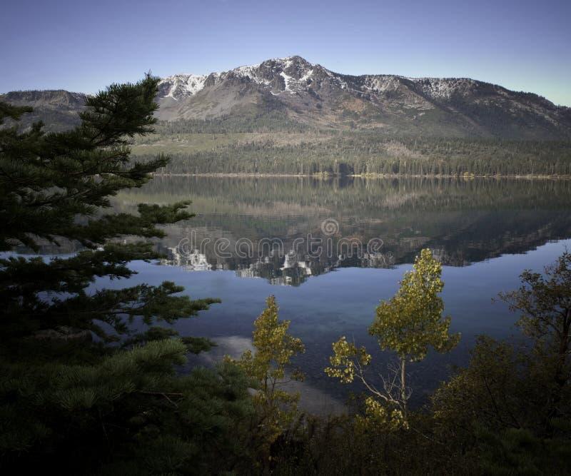 Lago caduto leaf immagini stock libere da diritti