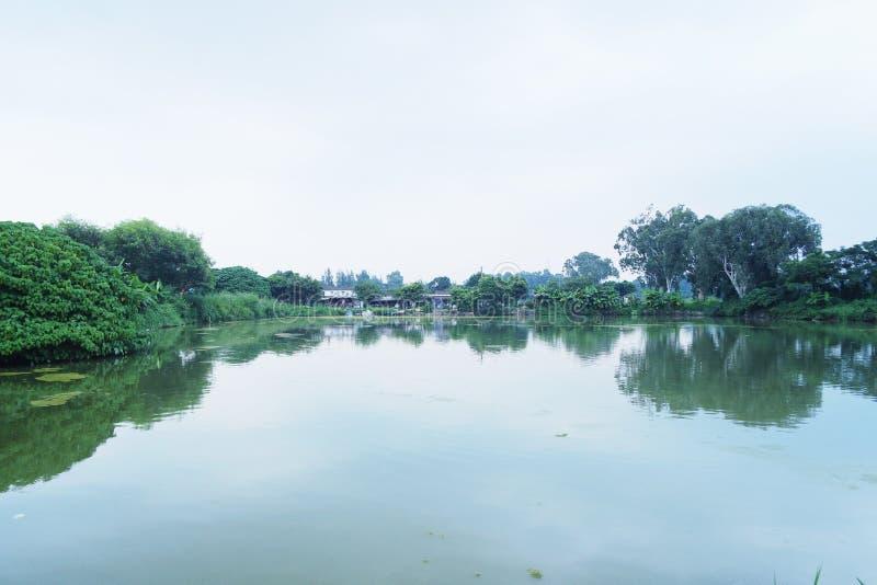 Lago calmante immagini stock libere da diritti