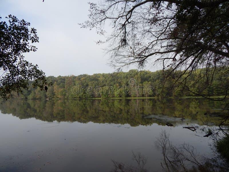 Lago calmo foto de stock
