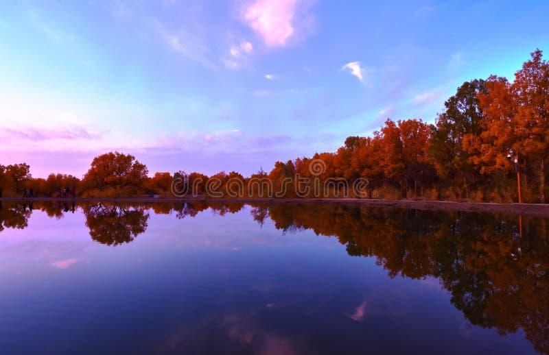 Lago calmo no por do sol da queda imagens de stock