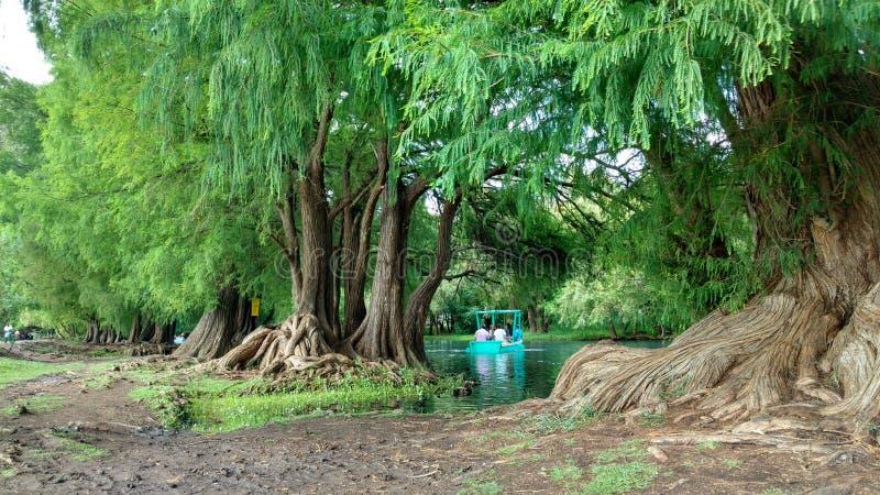 Lago Camecuaro imagenes de archivo