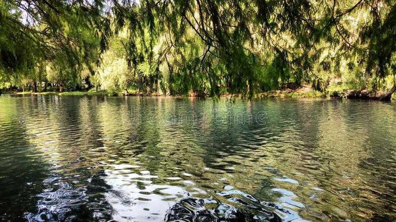Lago Camecuaro fotos de archivo