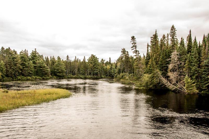 Lago canada Ontário de uma paisagem selvagem natural de dois rios perto da água no parque nacional do Algonquin imagens de stock royalty free