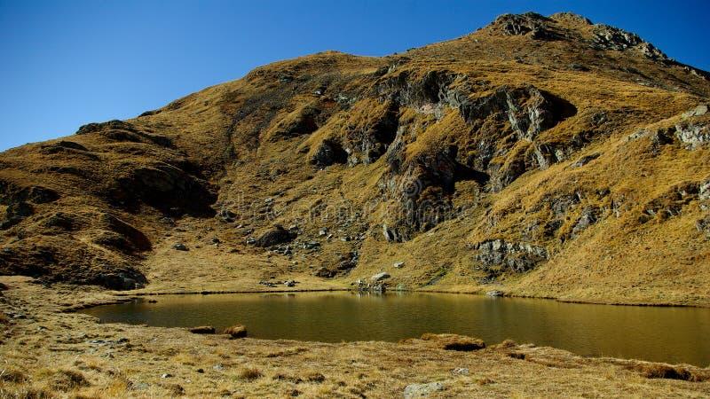 Lago capra (lago goat) nos cumes de Transylvanian, Romênia imagem de stock royalty free