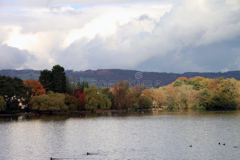 Lago Cardiff park de Roath foto de stock