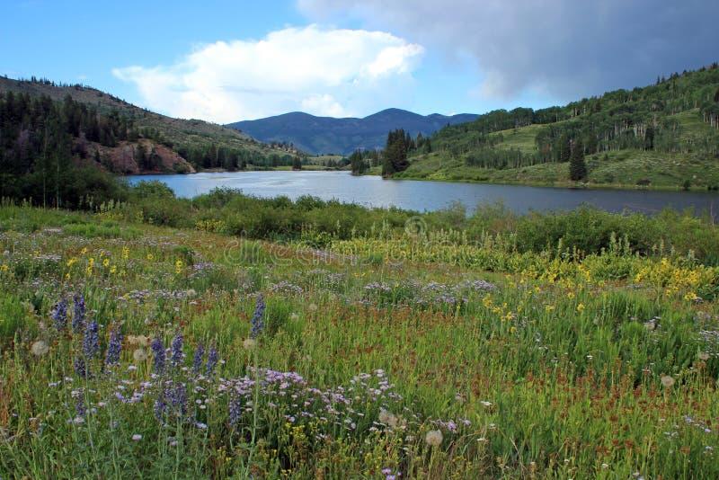 Lago cataract, Colorado imagem de stock royalty free