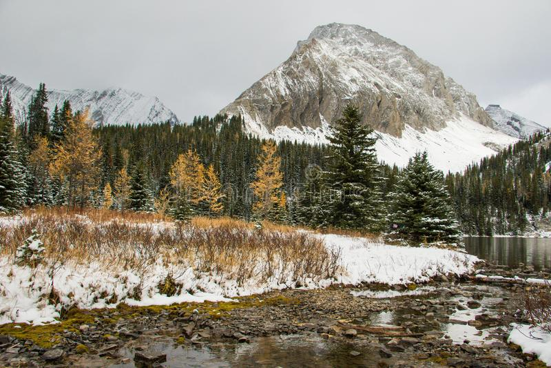 Lago chester al paese di Kananaskis nei colori di autunno immagine stock libera da diritti