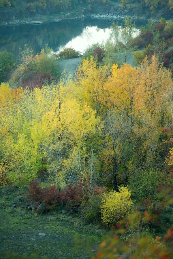 Lago circondato dalla foresta di autunno fotografie stock libere da diritti