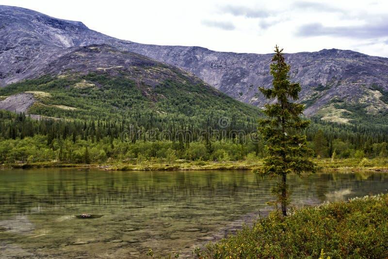 Lago claro en las montañas de Khibiny foto de archivo