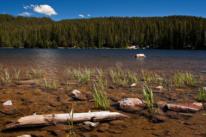 Lago colorado imágenes de archivo libres de regalías