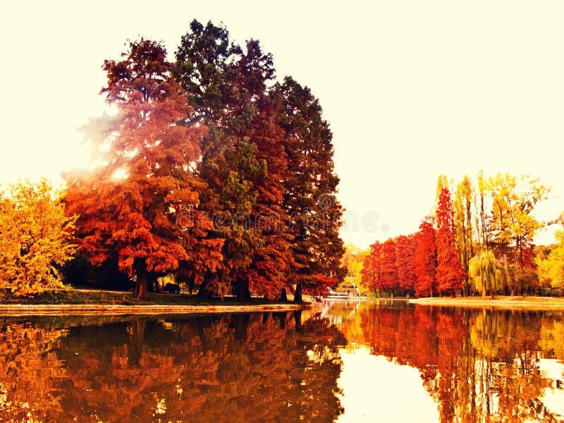 Lago colorido do outono imagens de stock royalty free