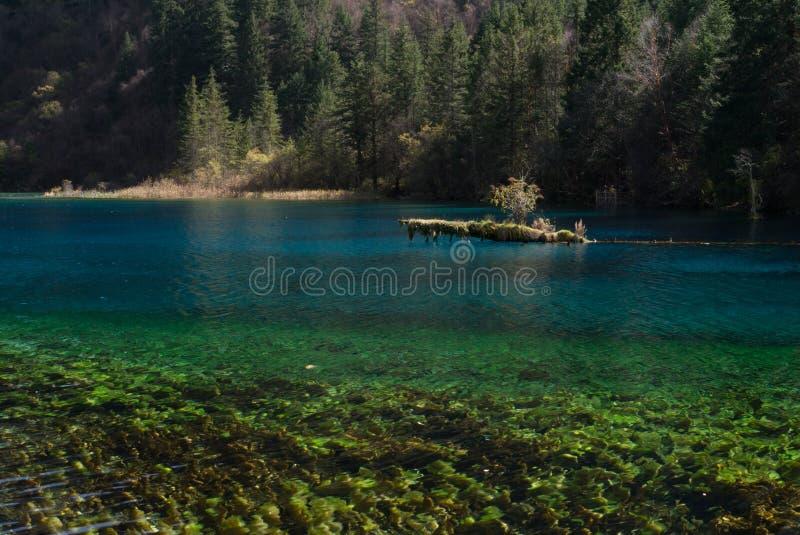 Lago colorido en el sitio el valle Jiuzhaigou del patrimonio mundial en otoño antes del terremoto 2016 imagen de archivo libre de regalías