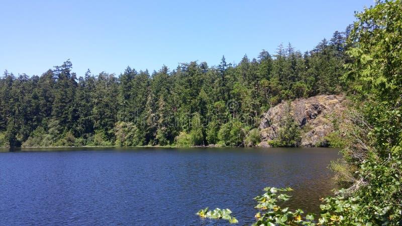 Lago in Columbia Britannica fotografia stock libera da diritti