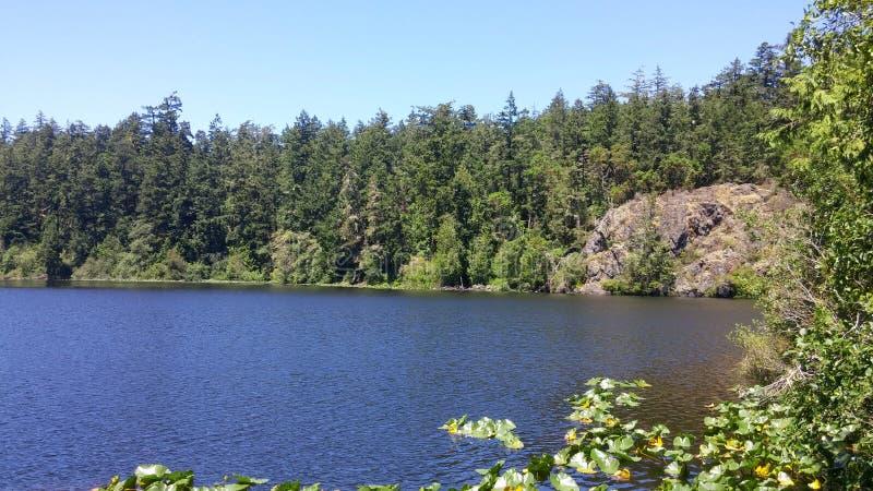 Lago in Columbia Britannica immagine stock libera da diritti