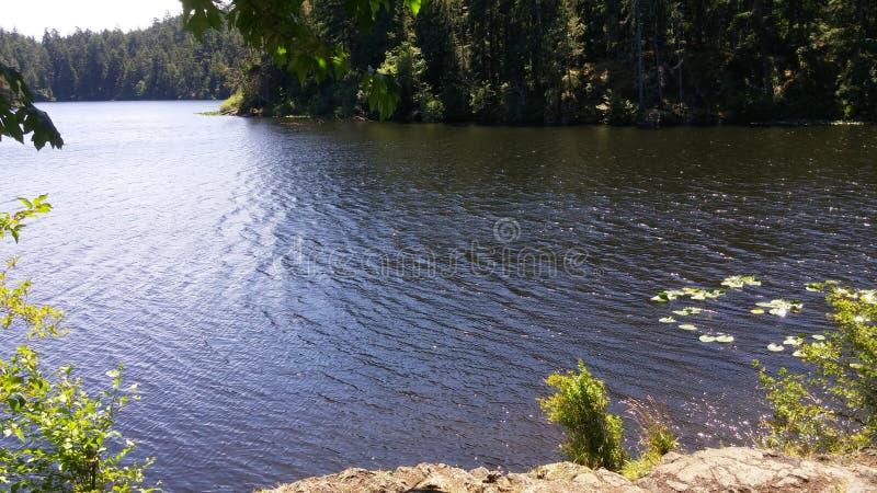 Lago in Columbia Britannica fotografie stock libere da diritti
