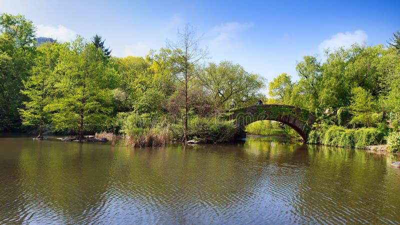 Lago com a ponte no parque fotografia de stock