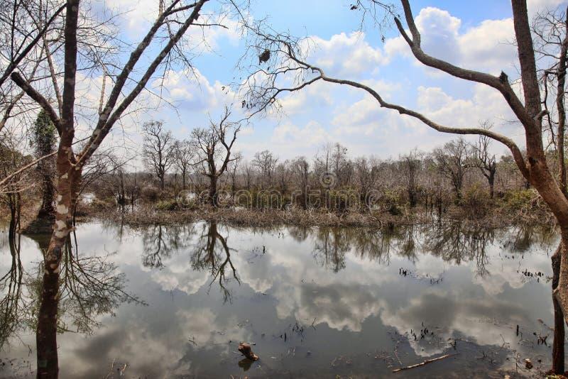 Lago com reflexões das nuvens foto de stock